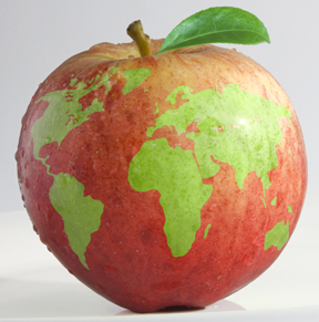 Red Delicious apple with Earth's continents superimposed like a globe.